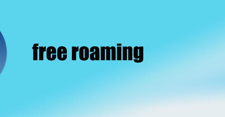 Le Togo opte pour le free roaming
