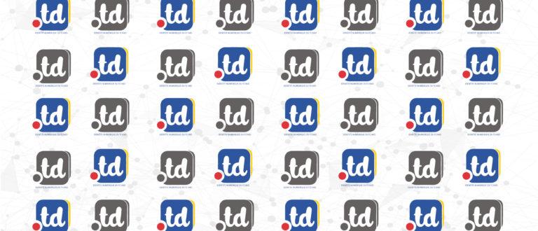 """Le Tchad promeut le """".td"""" pour soigner son identité numérique"""
