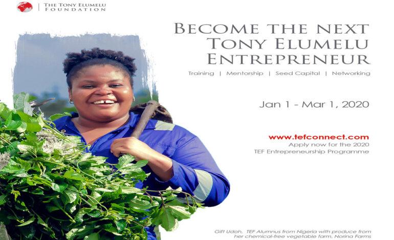 Postulez au programme d'entrepreneuriat de la Fondation Tony Elumelu
