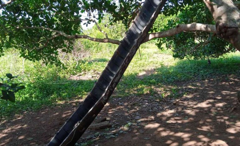 Côte d'Ivoire : Des débris d'une fusée chinoise tombent du ciel