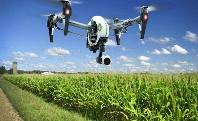 Afrique : Microsoft met sa technologie au service de l'agriculture